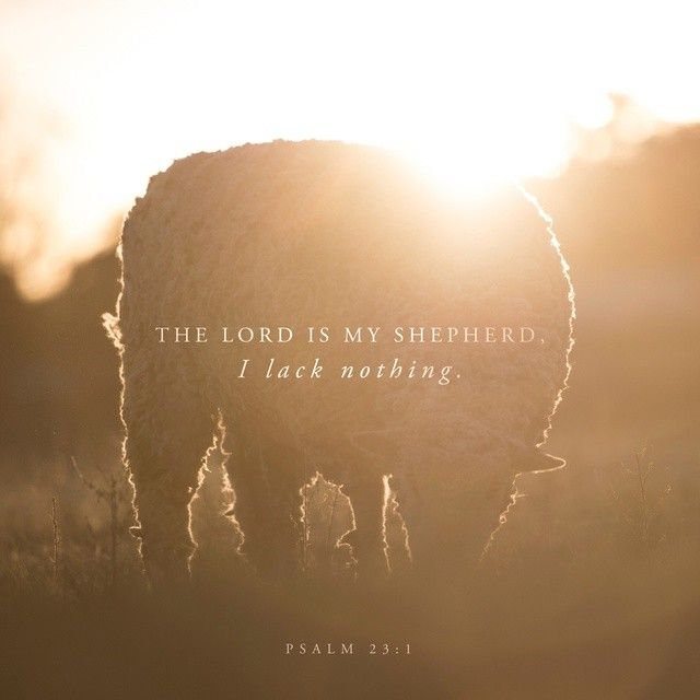 The LORD is my shepherd; I have everything I need. He lets me rest in fields of green grass and leads me to quiet pools of fresh water. He gives me new strength. He guides me in the right paths, as he has promised. Psalms 23:1‭-‬3 GNB