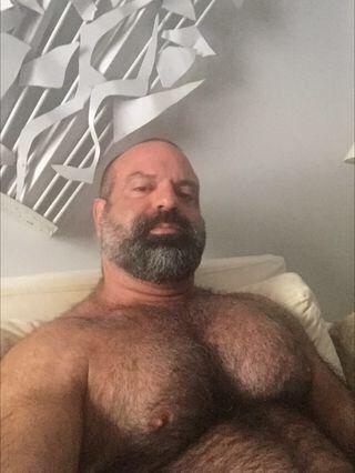 Older hairy bears