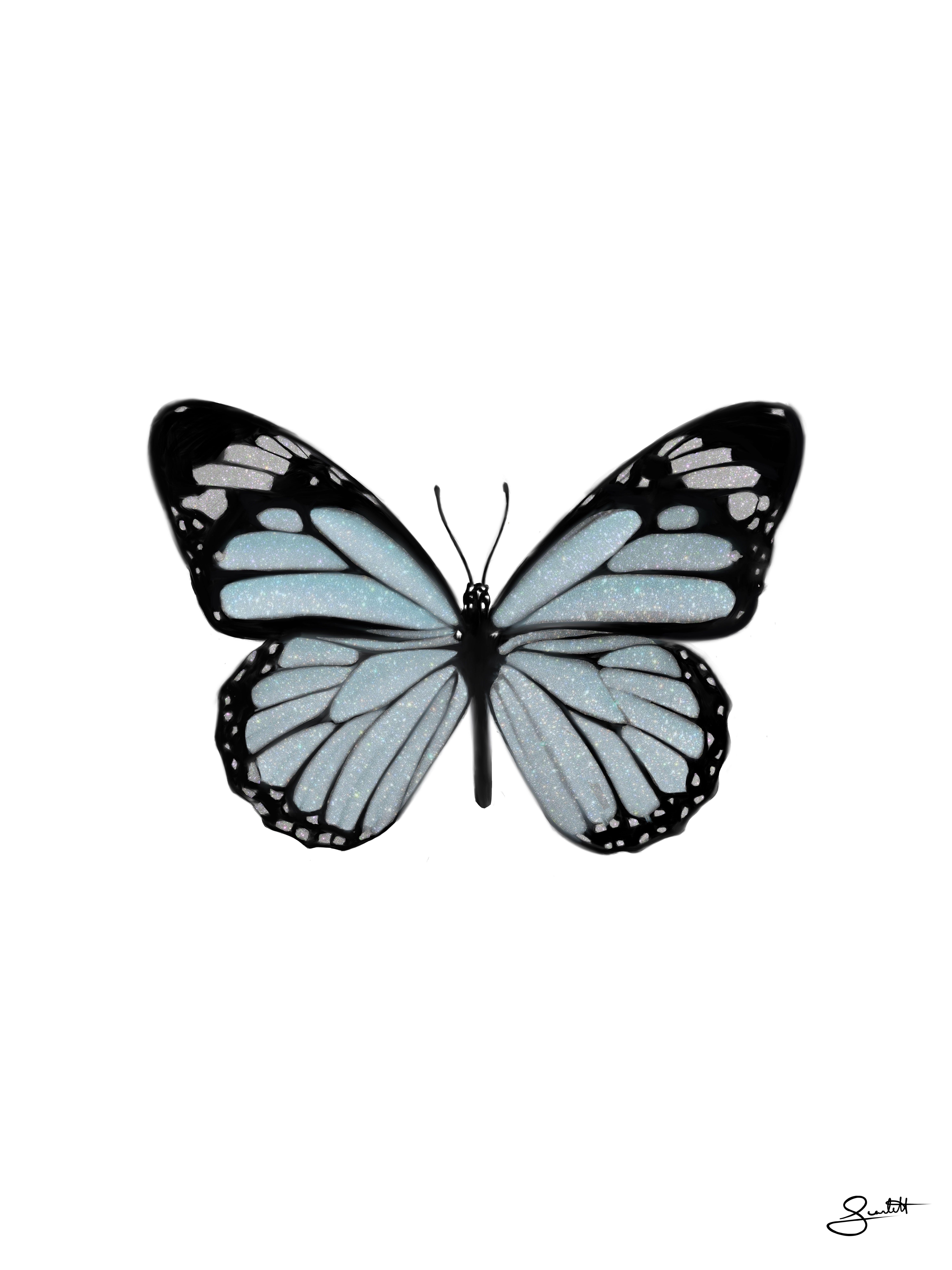 25c16c9e7a49c5f4cceebf19fe67c45f » Butterfly Drawing Aesthetic