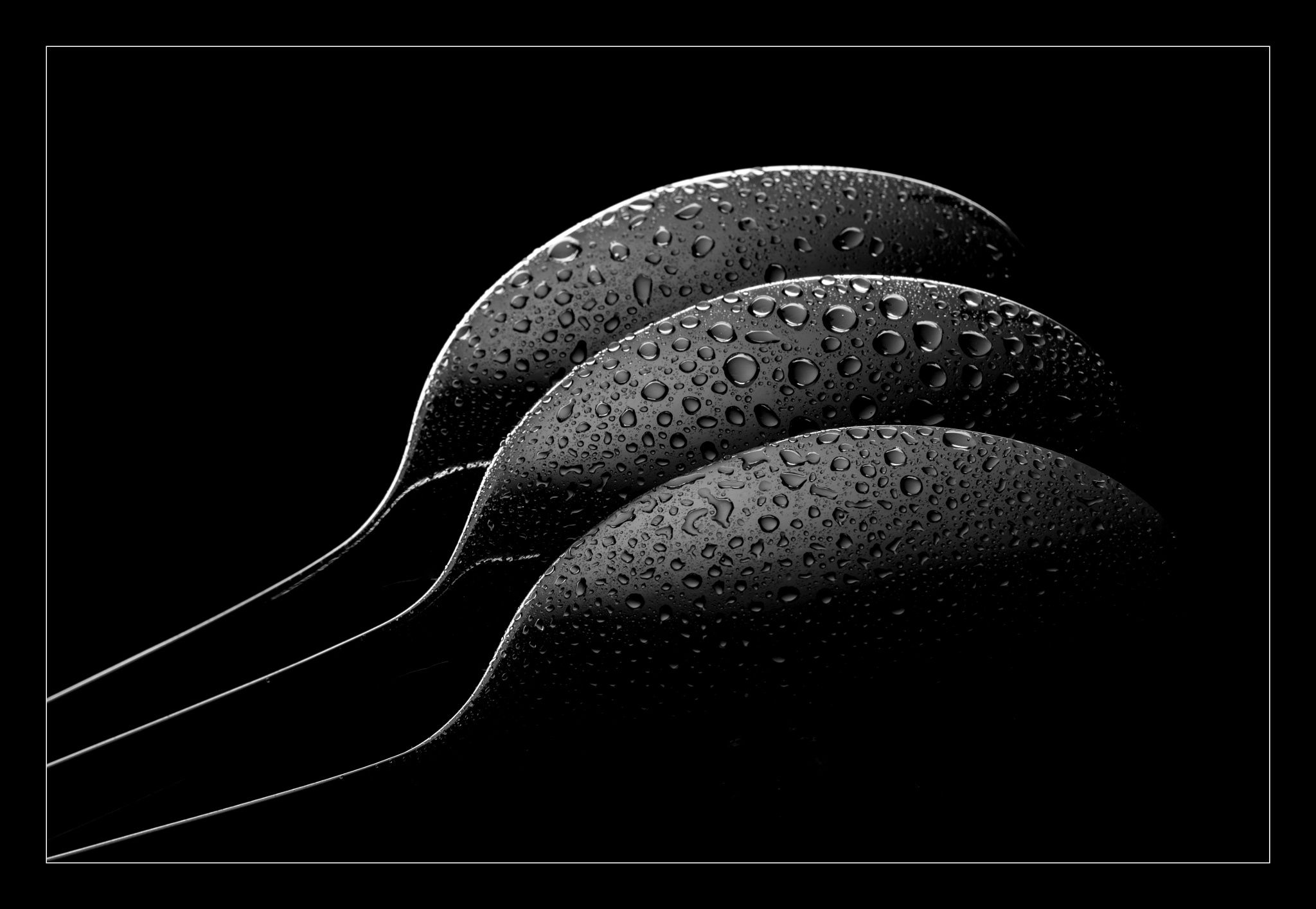 Photo three spoons by Wilhelm Abels on 500px