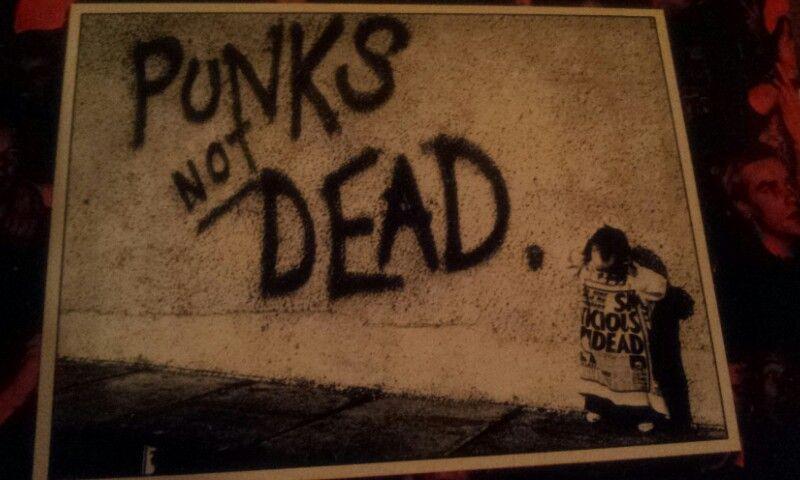 Pochette De The Exploited Punk S Not Dead Punks Not Dead Exploitation Punk