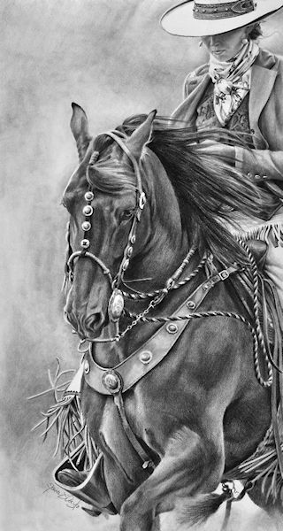 Maria D Angelo Fine Art In Pencil Equine Western Wildlife For