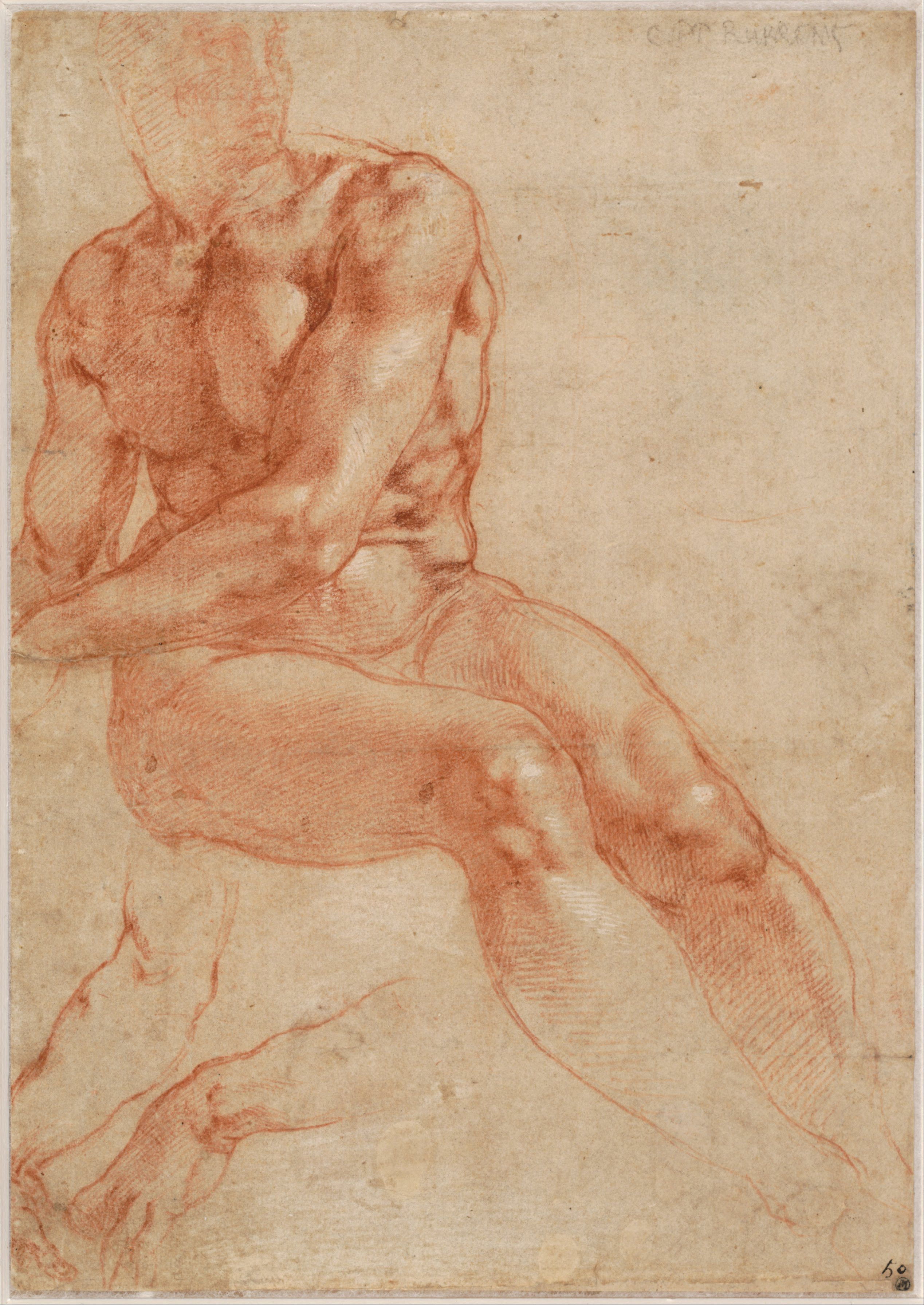 Seated Young Male Nude\