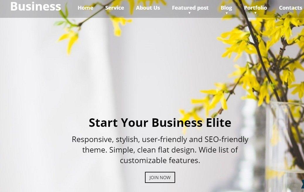 Business Elite: WordPress Business Theme | Wordpress Themes | Pinterest
