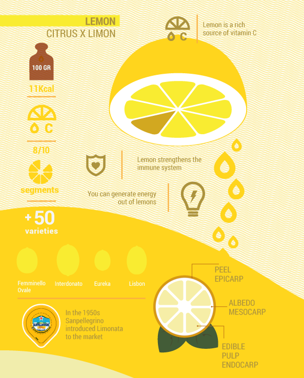 Lemon Inphographic Herbsspicesfresh Made Food Prep Pinterest