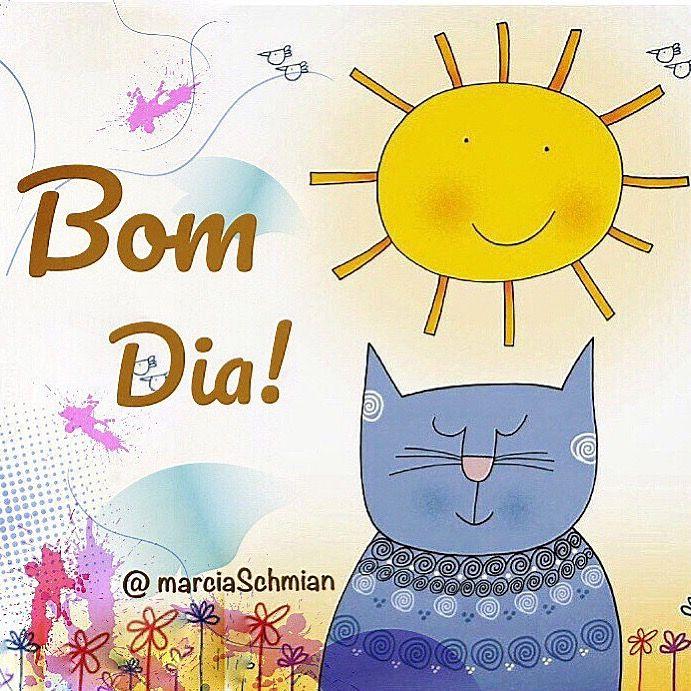 Bom Dia Frases Pensamentos Bomdia Sol Gato Reflexão Frases