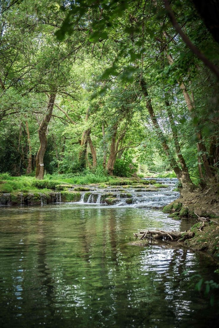 Solace In Nature Nature Pictures Nature Photography Landscape Photography