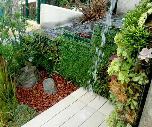 outdoor succulent garden. 25 Indoor And Outdoor Succulent Gardens Of All Sizes - Garden Lovers Club U