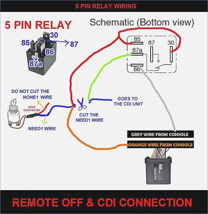 5 Pin Dmx Wiring Diagram  U2013 Artechulate Info