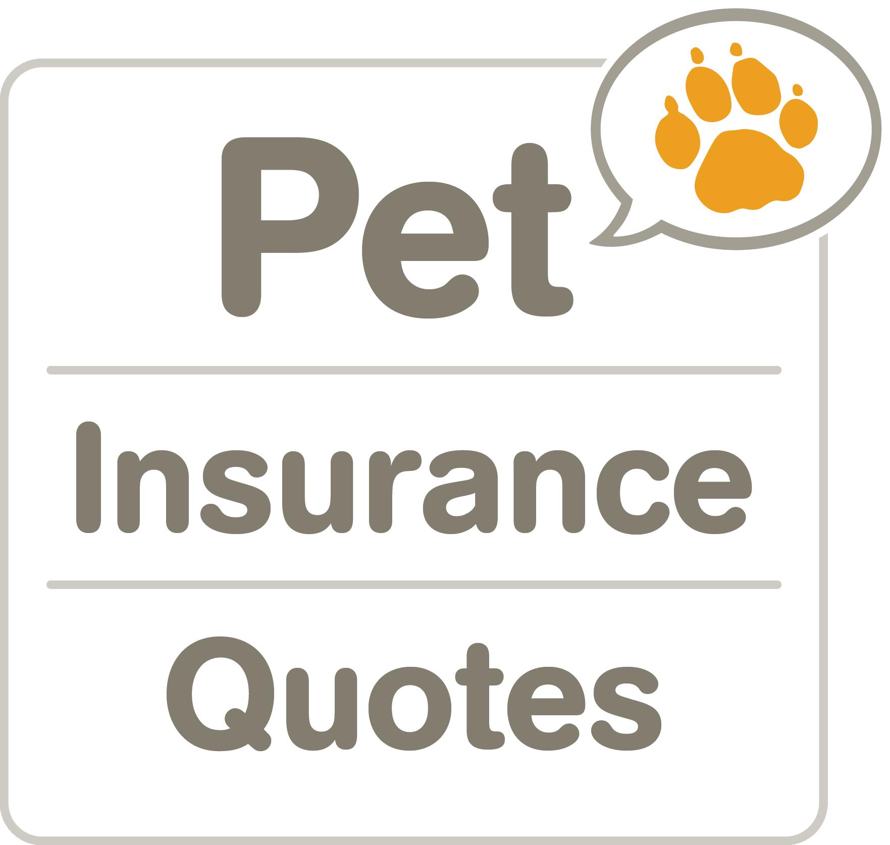 Petinsurancequotes Com Logo Pet Insurance Quotes Pet Insurance