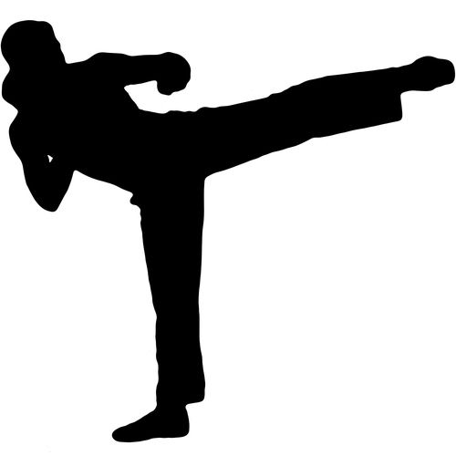 Flying Side Kick Silhouette