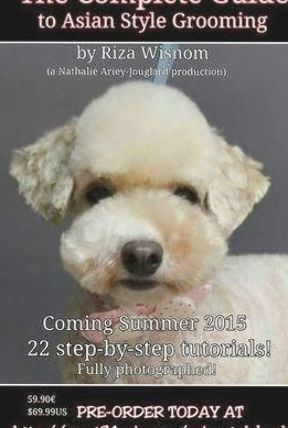 More About The Eager Poodle Dog Grooming #poodlesandpaws #yorkiepoodle #poodlepuppy