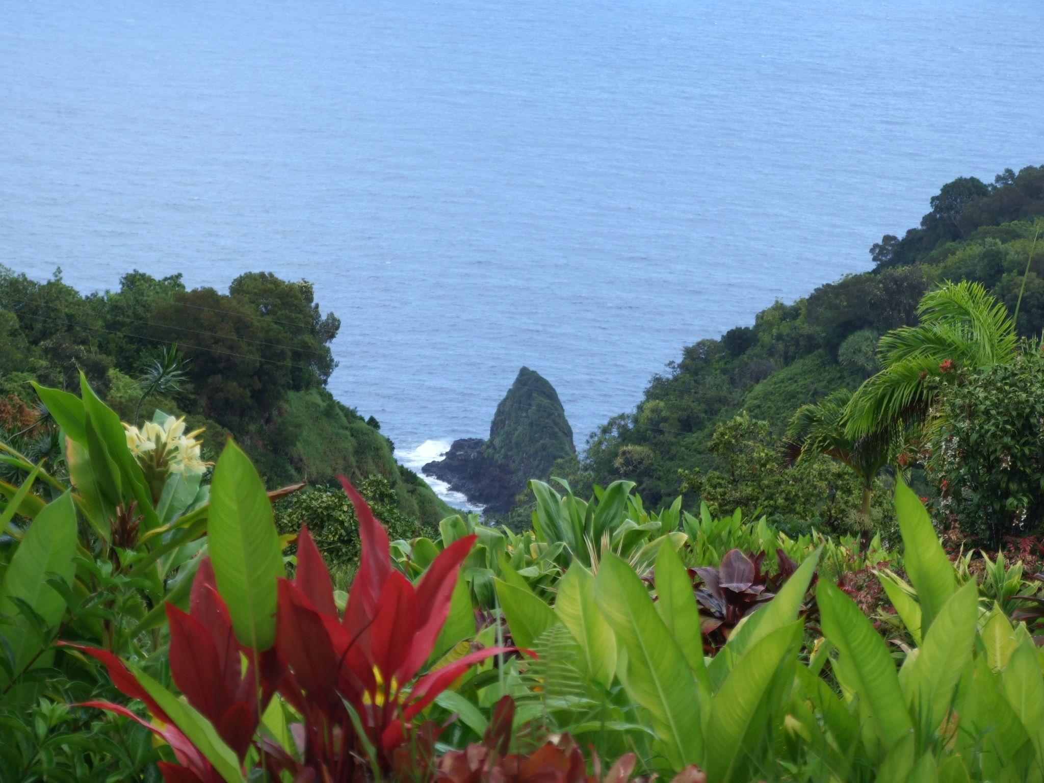 25c53bb463807c796bb5a96fa85e92e4 - Hana Maui Botanical Gardens Hana Hi