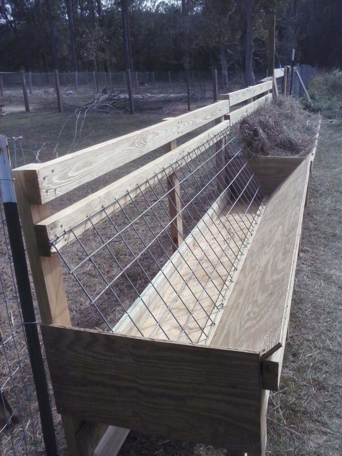 challenged survival the best hay feeder for goats in the world