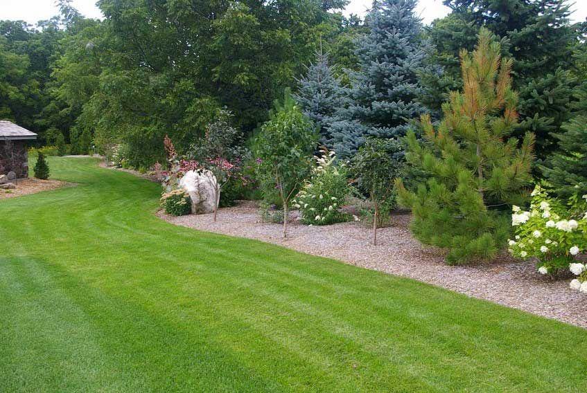 Privacy Landscaping Ideas For Outdoor Home Design With Feature Garden  Border Garden Road Barrier Privacy Garden