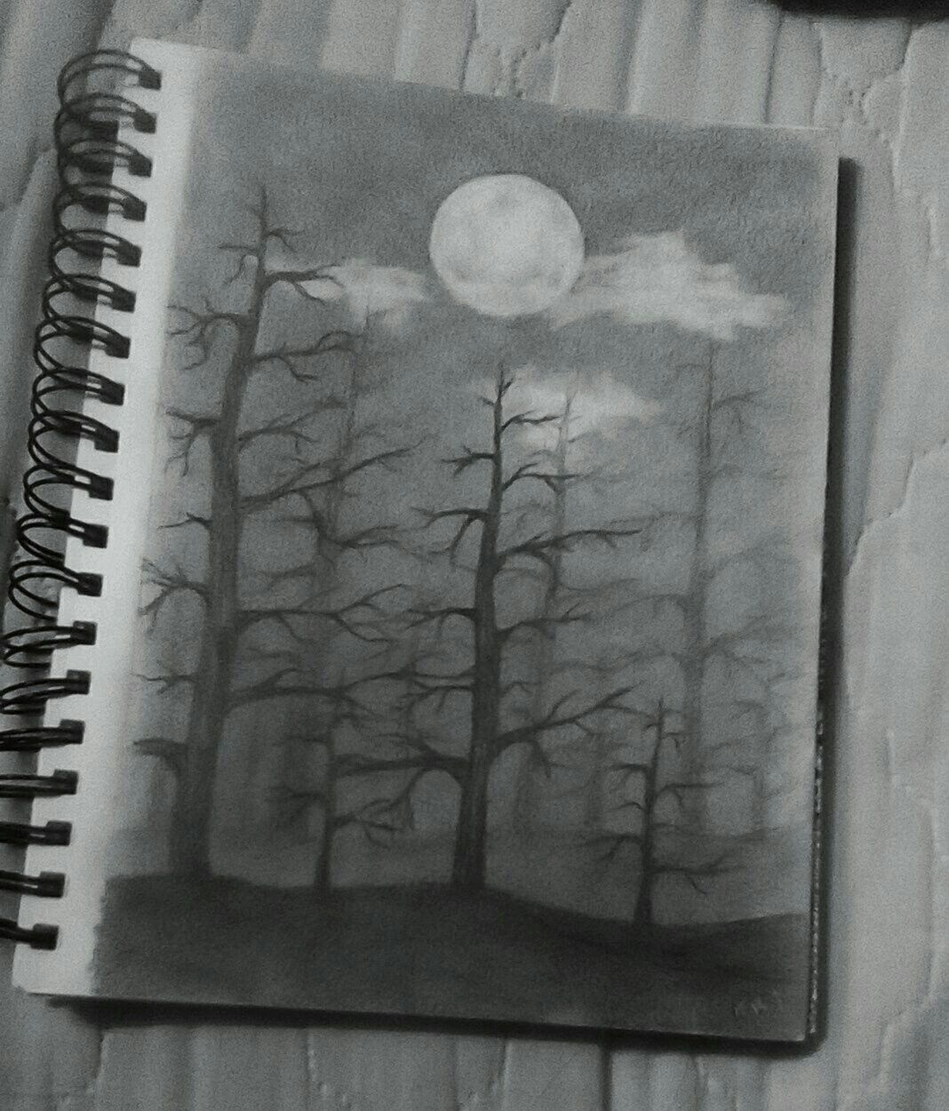Pencil drawing. Dark forest. in 2019 | Pencil drawings ...