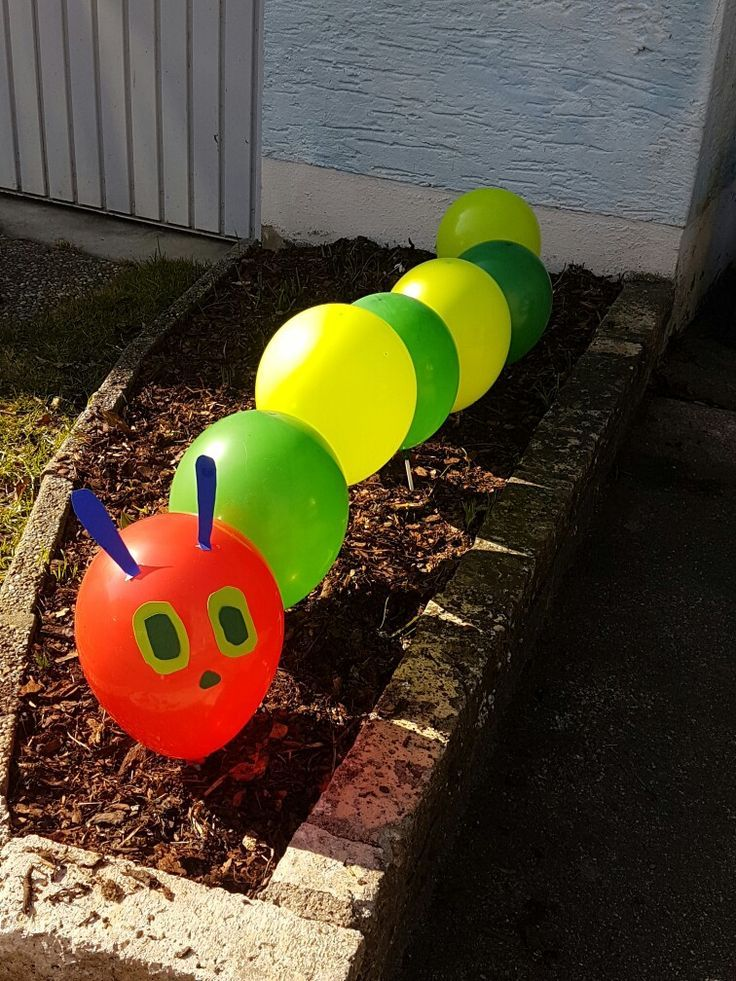 Photo of Balloon caterpillar hungry