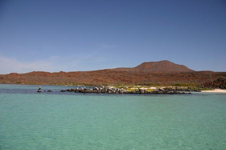 Baja California del Sur: Isola Coronado