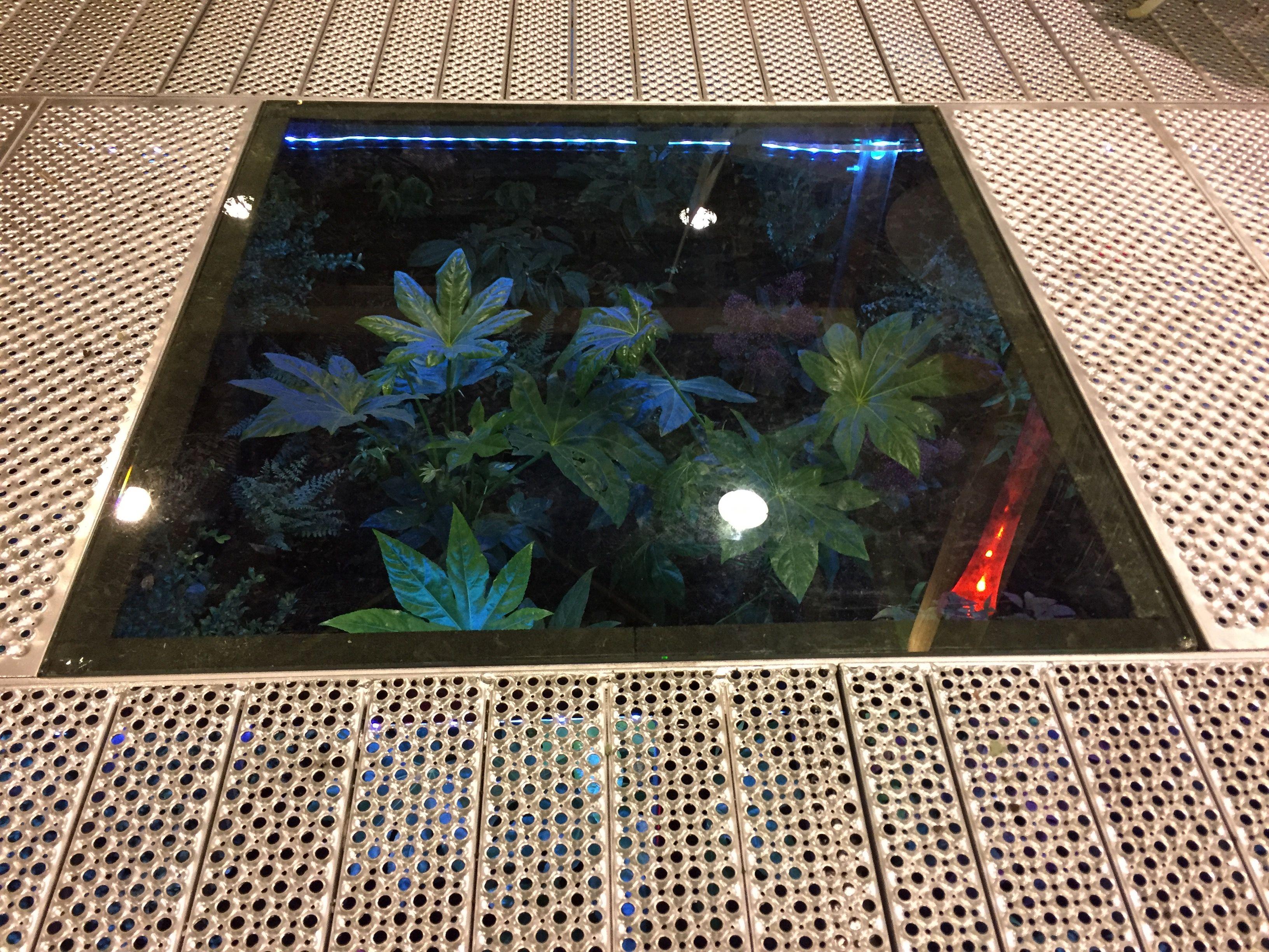 gezien op tuinidee 2017 vloerrooster met glasplaat en daaronder planten en verlichting ontwerp
