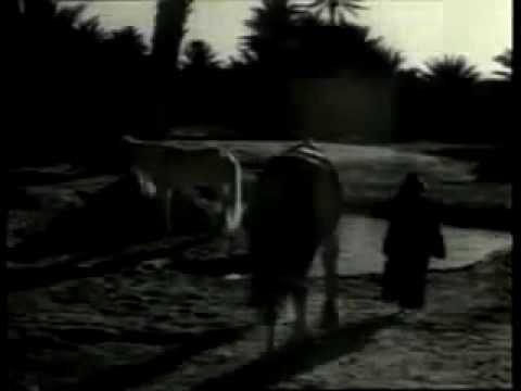 ▷ Sting - Jerusalem (Official Video) - YouTube | MuSIc