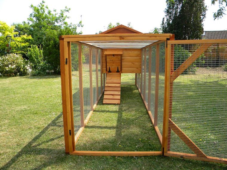 build a chicken run enclosed chicken house chicken