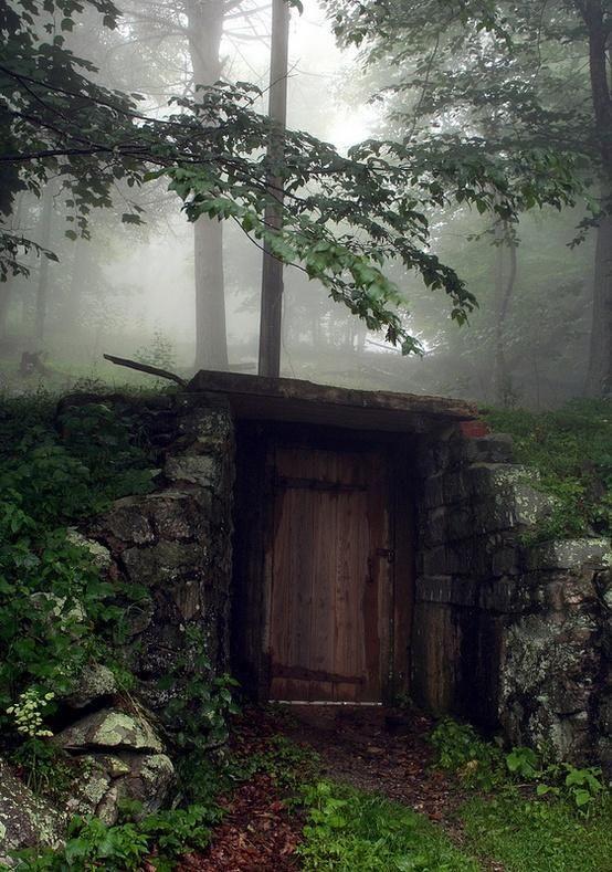 Secret Door in the Woods... Or really cool root cellar