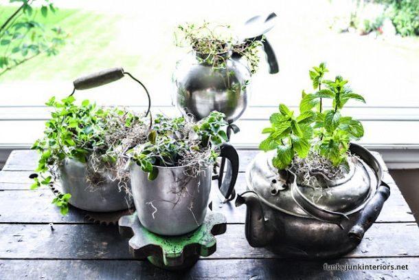 Make an old kettle herb garden in seconds!