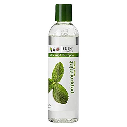 Amazon Com Eden Bodyworks Peppermint Tea Tree Clear Shampoo 8oz Body Scrubs Beauty Tea Tree Shampoo Natural Hair Shampoo Natural Hair Styles