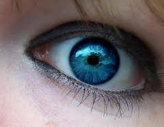 Ever Wonder What Shade Of Blue Sophia S Eyes Are They Are Cerulean Blue Just Like This One Rare Eye Colors Rare Eyes Cool Eyes