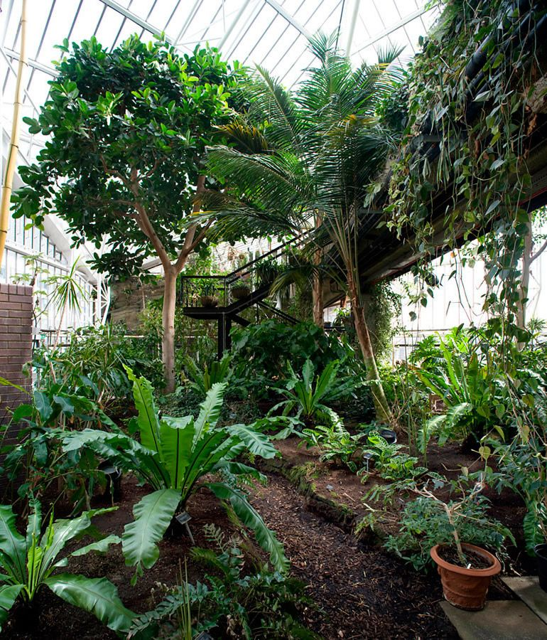 Brutalist Icon S Secret Garden Exposed Barbican Conservatory