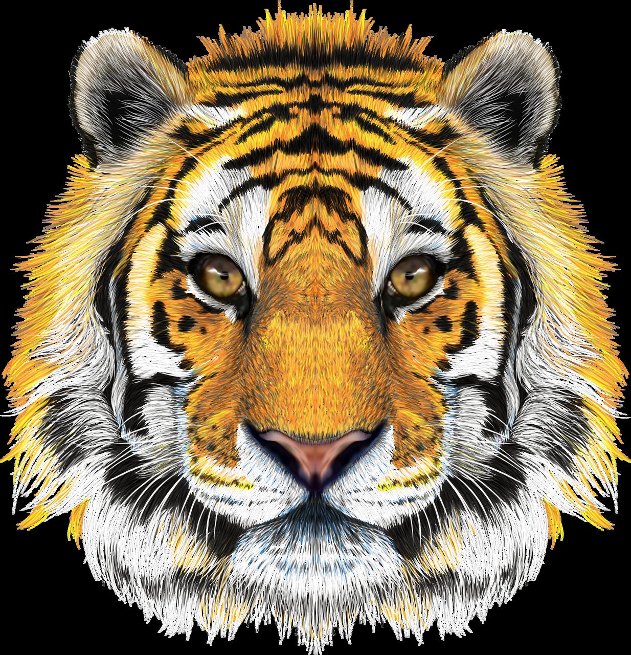 Pin On Tigry Lvy