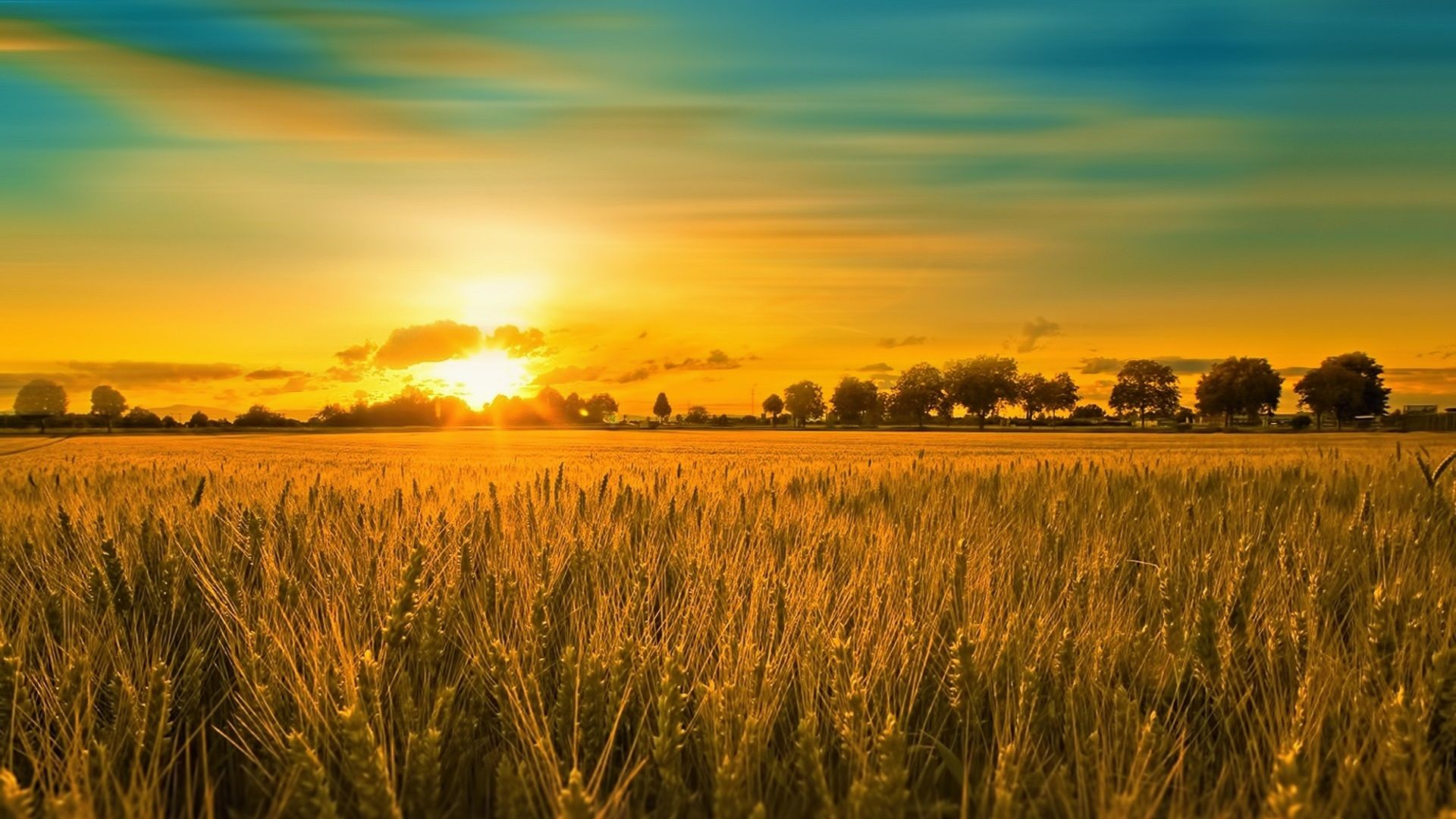 summer sunset landscape wallpaper - photo #4