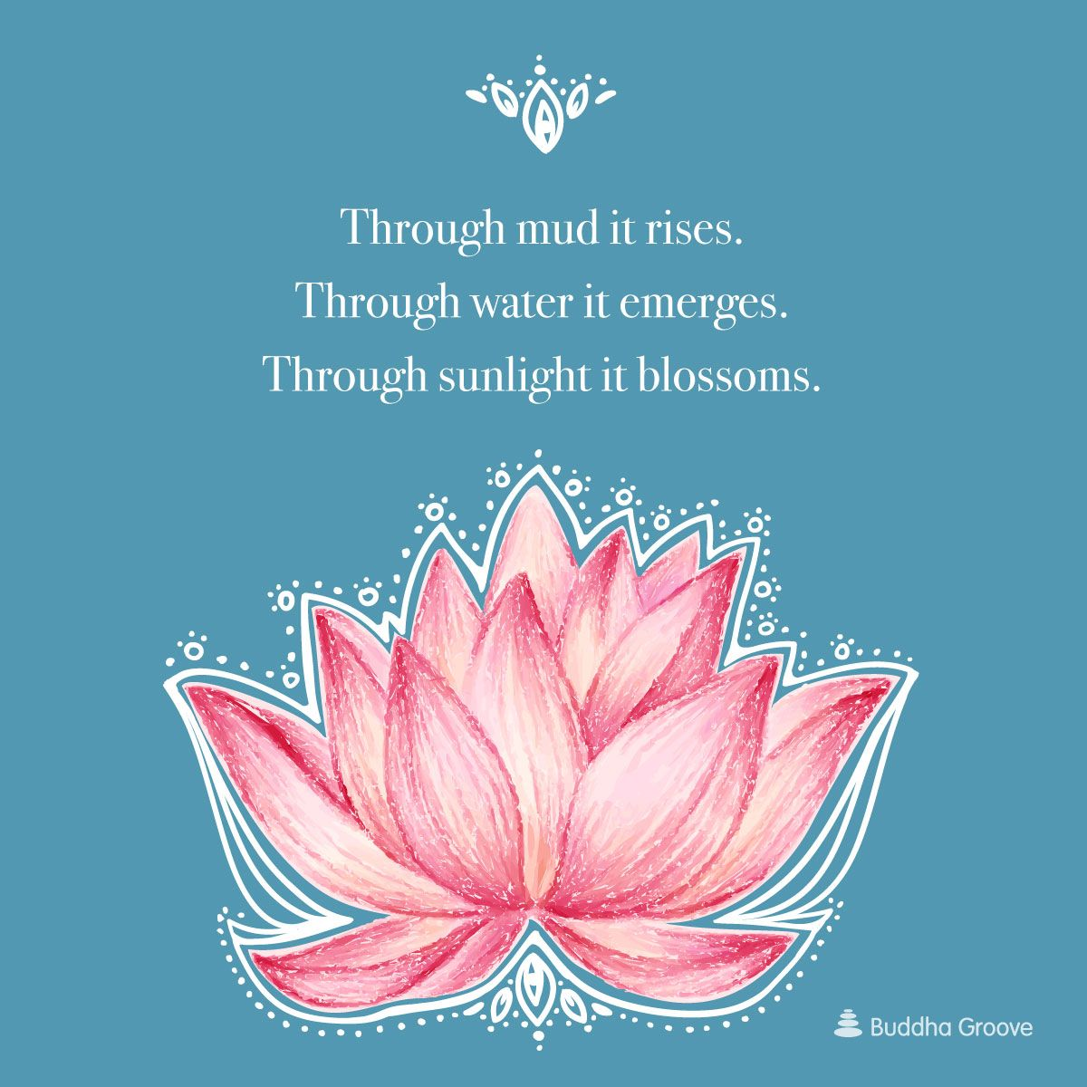 Inspiration from the Lotus Flower (With images) Lotus