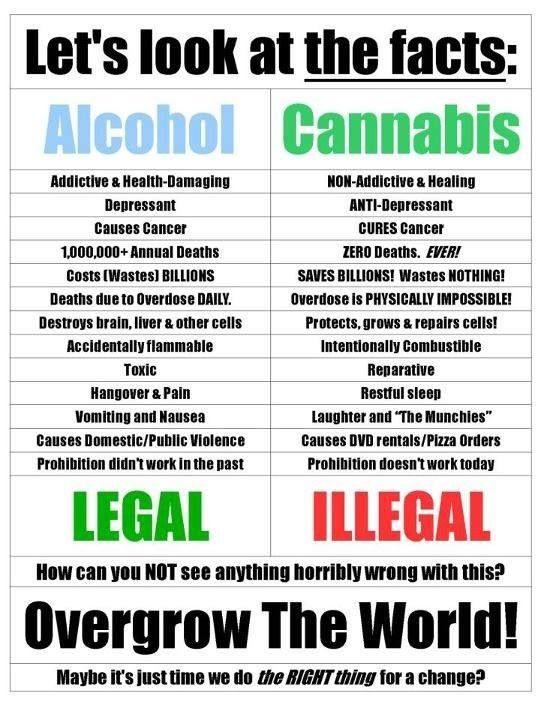 important facts about marijuana legalization smoke