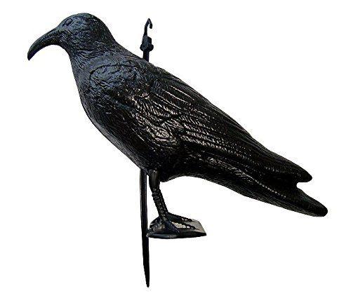 Navyline - Corbeau en plastique épouvantail contre mouettes et pigeons