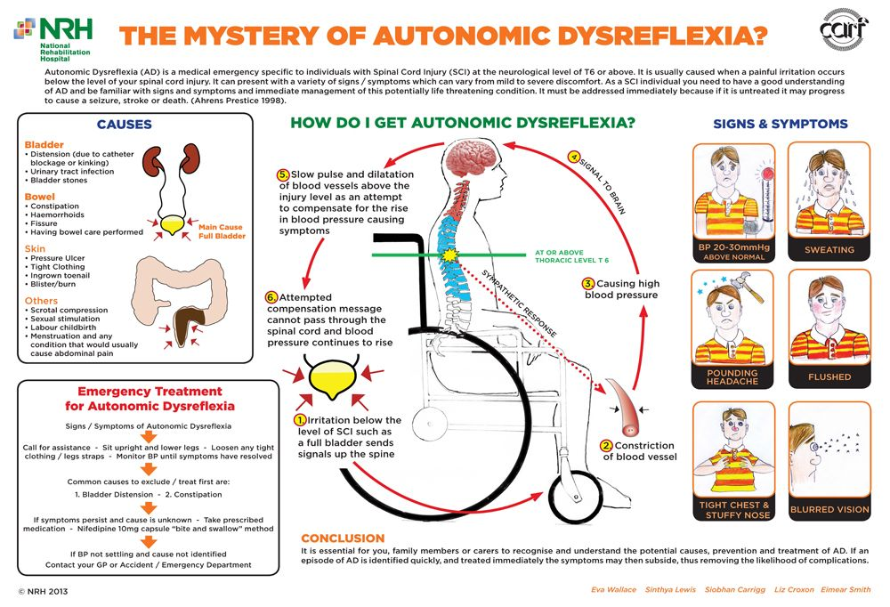 Autonomic Dysreflexia. >>> See it. Believe it. Do it
