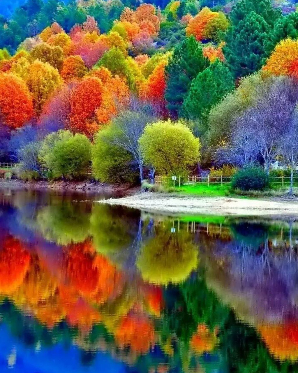 Beautiful Fall Reflections In 2019 Autumn Scenery