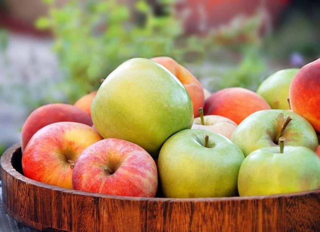 Manfaat Buah Apel Bagi Pencernaan