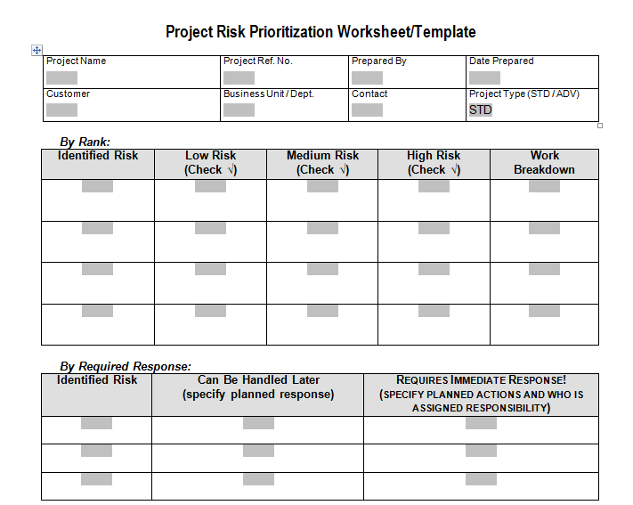 Project Risk Prioritization Worksheet Download For Program