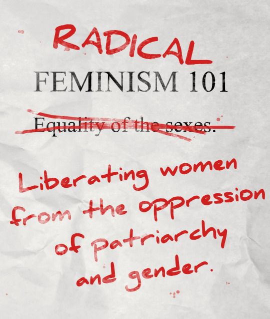Radical feminism 101   Radical feminism, Liberal feminism, Anti feminism
