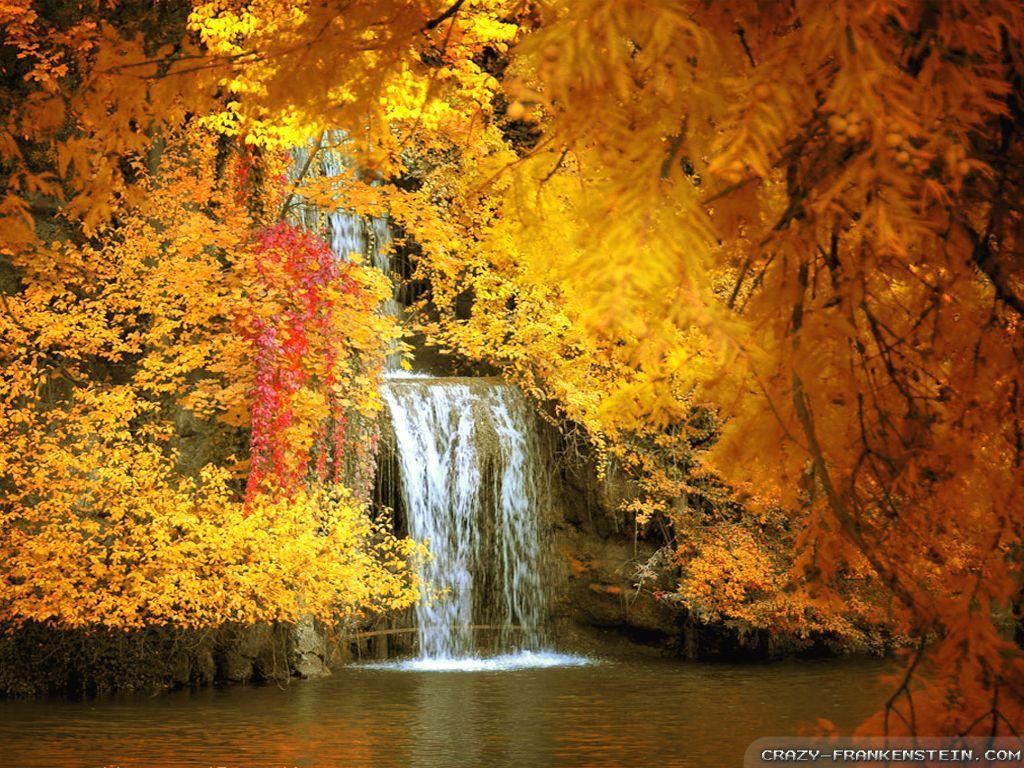Free Desktop Wallpaper Autumn Scenes Wallpapersafari Autumn Scenery Cool Pictures Of Nature Autumn Scenes