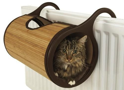 For cats sensitive to cold: the radiator bed !