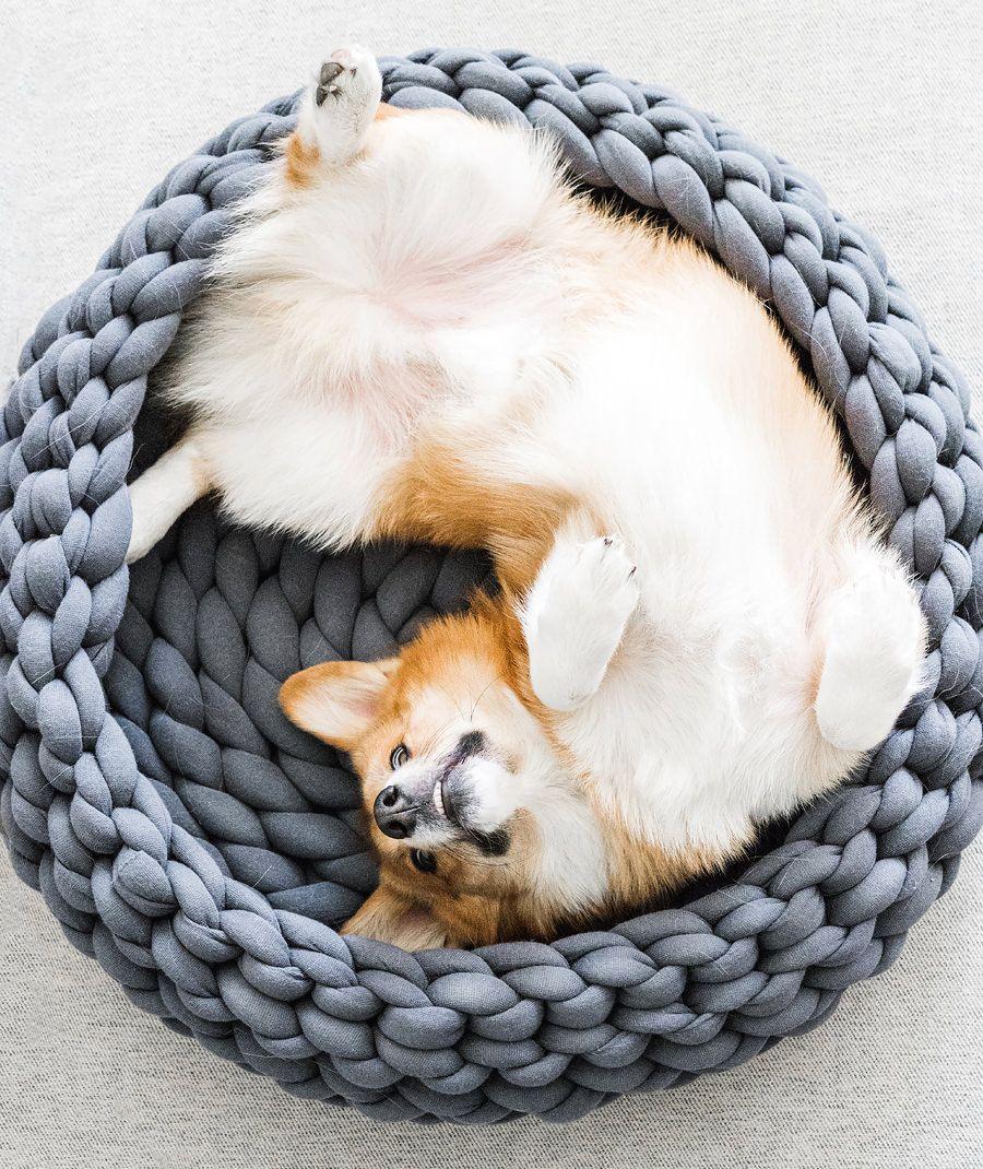 Ohhio Braid Dog Bed Diy Instructions Pdf Ohhio Crochet Cat Bed Diy Dog Bed Plush Pet Bed