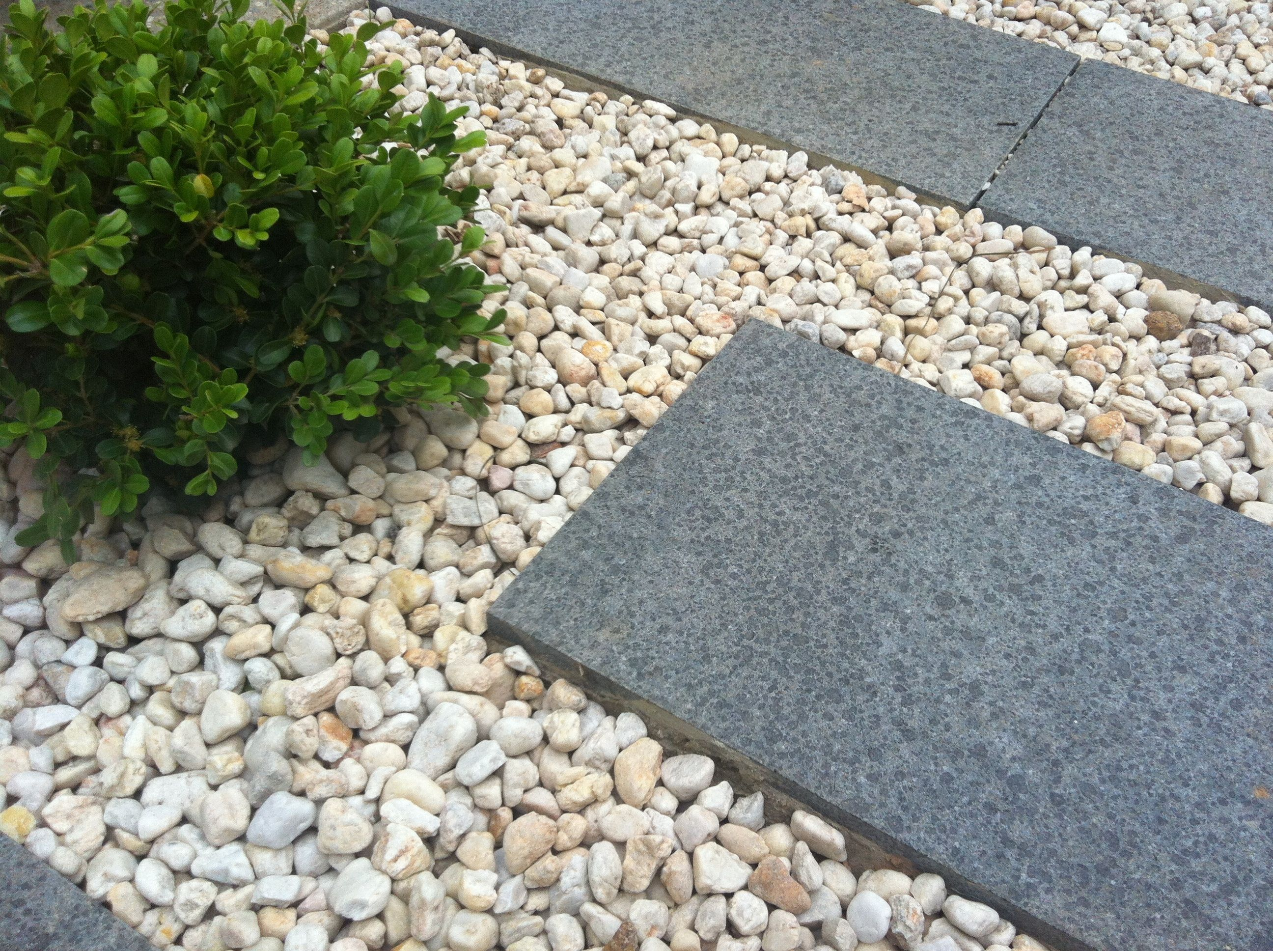 granite steppers photo features a japanese buxus sphere