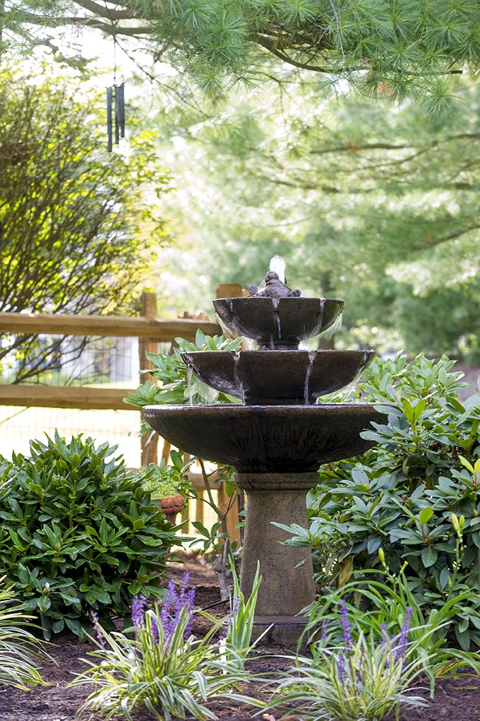 Fountain And Plantings By Gasper