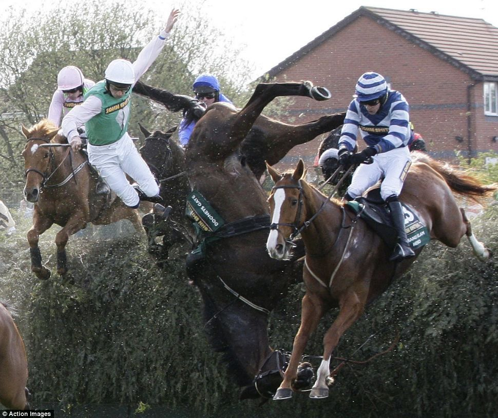 Tragedy Dooneys Gate In The Centre Of The Picture One Of The Race S Two Fatalities Ridden By Paul Mullins Falls At Bech Horses Hackney Horse Grand National