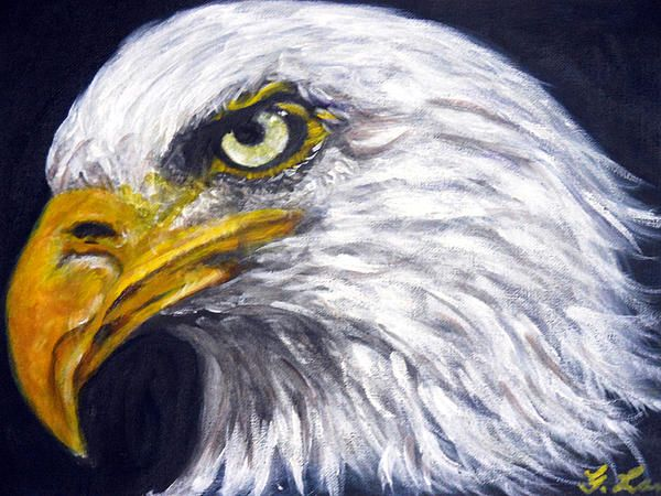 Majestic Bald Eagle acrylic on canvas board size: 8 x 11 inches By ...