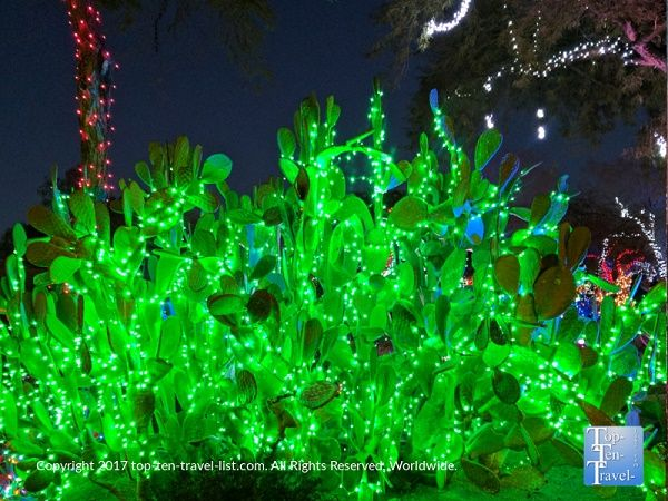 beautiful green cactus lights at ethel m chocolate factory in henderson nv as part