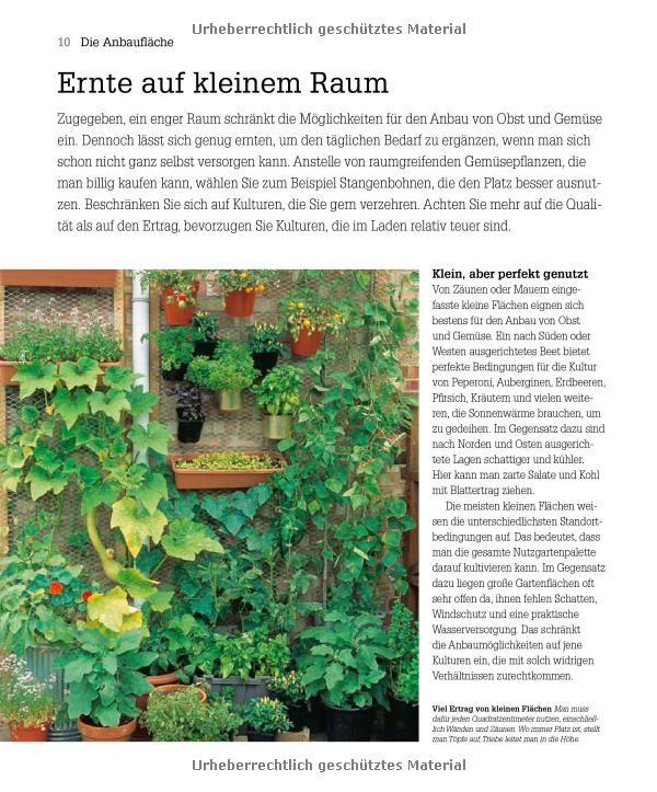 Kleiner Garten - große Ernte: Selbstversorgung Schritt für Schritt: Amazon.de: Lucy Halsall: Bücher