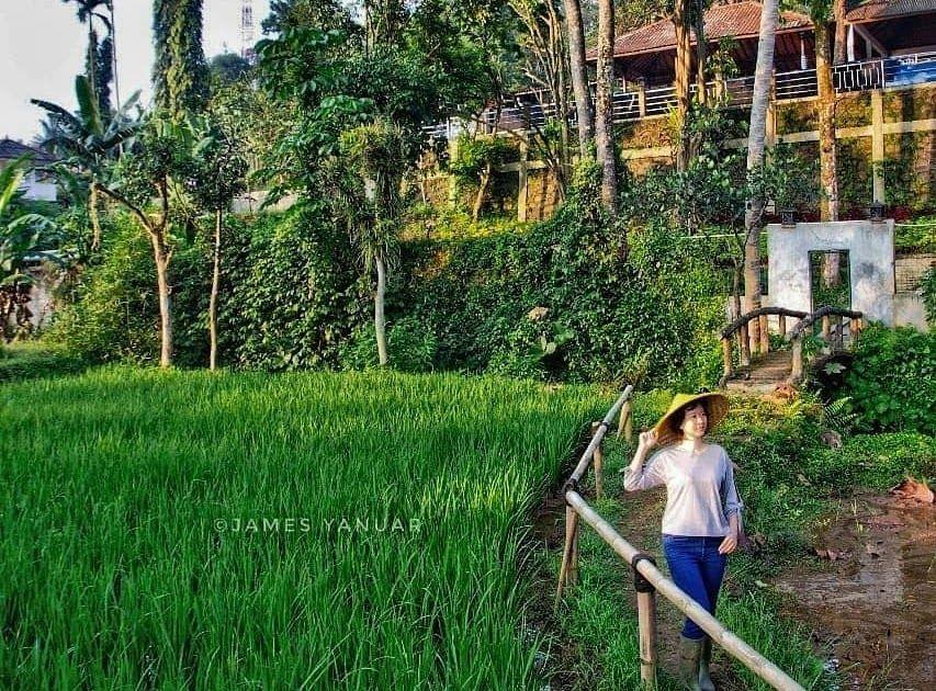 26 Villa Pemandangan Indah Di Bogor Dengan Letaknya Yang Berada Di Dataran Tinggi Cisarua Puncak Padat Karya Batu Layang Cisarua Di 2020 Pemandangan Villa Maldives
